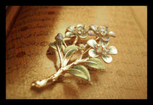 Мухаммад (мир ему) Пророк и Посланник Аллаха.
