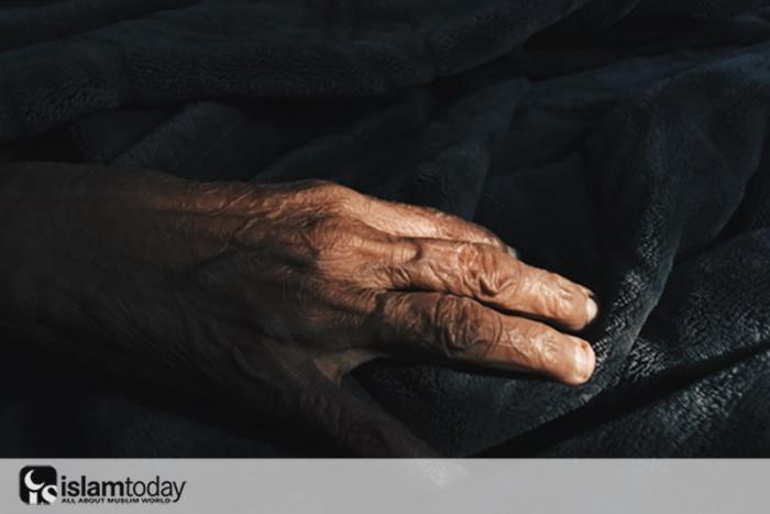 История пророков: 10 год хиджры
