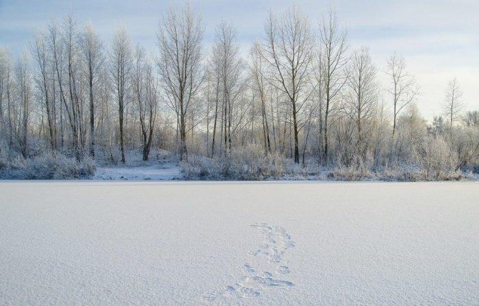 Фото: Анатолий Стафичук