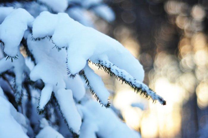 Снега вообще не было в столице Татарстана вплоть до 27 декабря в 1982 году. Ситуация, аналогичная нынешнему году, складывалась в 1990 и в 2008 годах