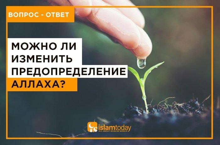 Можно ли изменить судьбу? (фото: freepik.com)