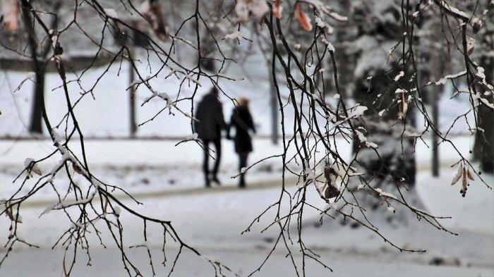 По словам специалистов, прогнозируется понижение температуры до 10–13 градусов и снег