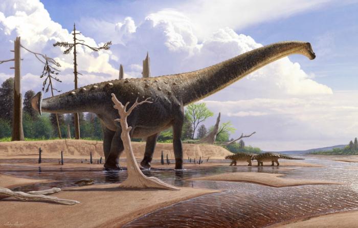 При этом животные могли передвигаться лишь на задних ногах (Изображение: Пресс-служба Палеонтологического института имени А.А. Борисяка РАН