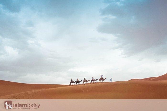 4 причины для любви к Пророку (фото: unsplash.com)