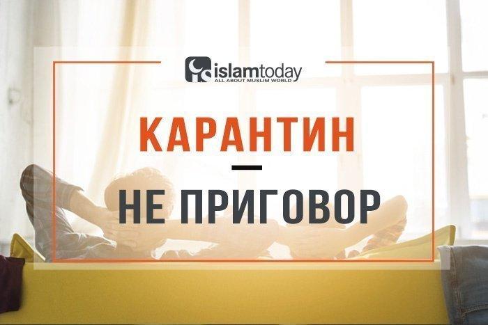 Как провести карантин с пользой (фото: freepik.com)