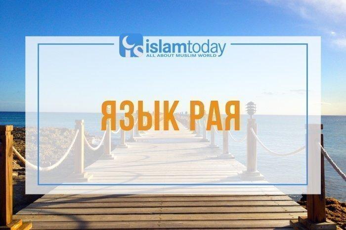 Три причины любить арабский язык. (Источник фото: unsplash.com)