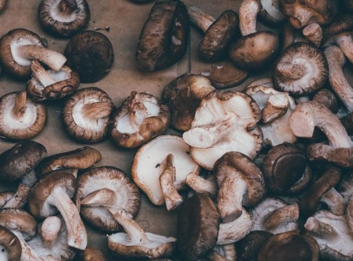 Все грибы в том или ином виде полезны из-за большого числа аминокислот и витаминов, а шиитаке особенно — они укрепляют иммунитет человека