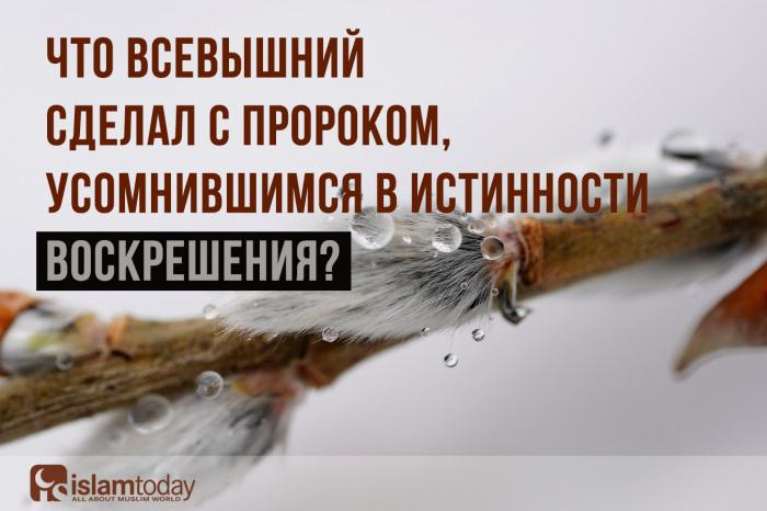 История воскрешения Узейра. (Источник фото: pixabay.com)