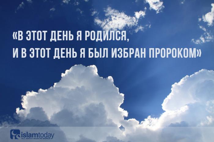 Слова ученых о мавлиде. (Источник фото: freepik.com)