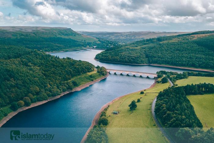 4 реки мирской жизни, которые берут начало в Раю. (Источник фото: unsplash.com)