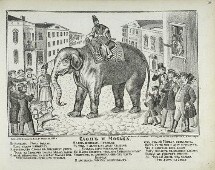 Погонщиками слонов в Петербурге традиционно были персы