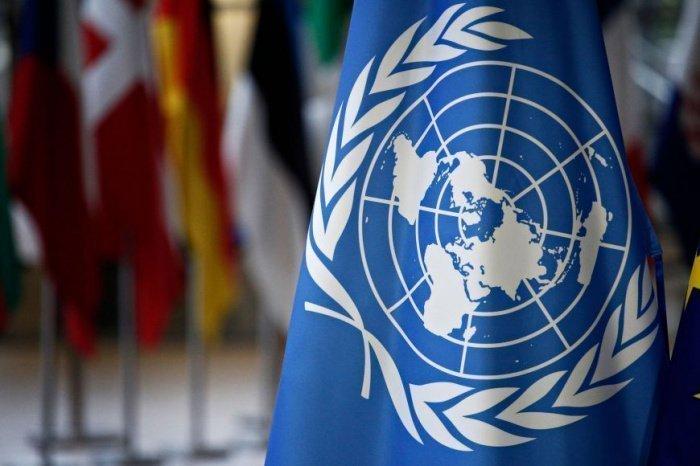 ООН выступила в поддержку Палестины.