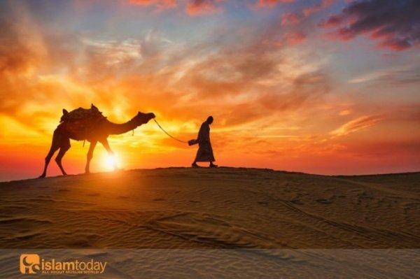 Что стало с мусульманской уммой сразу после смерти Пророка (ﷺ)?