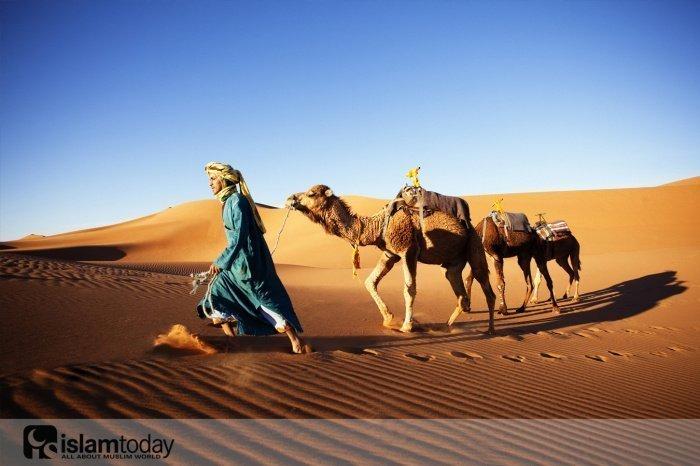 Как ислам пришел в Северную Африку и изменил ее навсегда (Источник фото: yandex.ru)