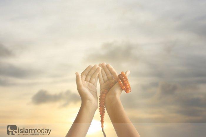 Что попросил Пророк Мухаммад ﷺ для многобожников? (Источник фото: shutterstock.com)