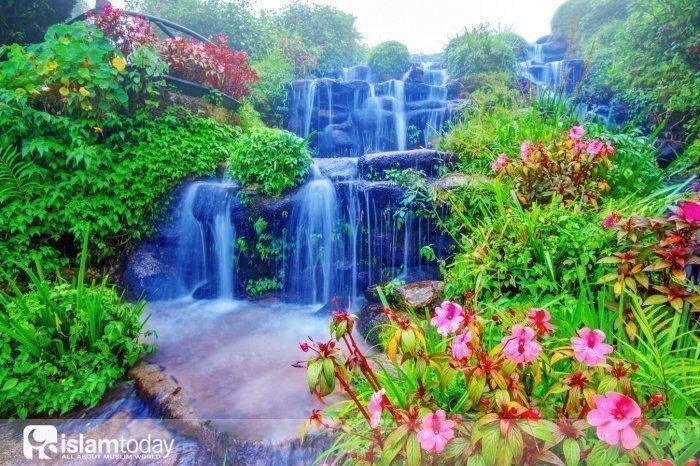 Названия Рая (Источник фото: freepik.com).