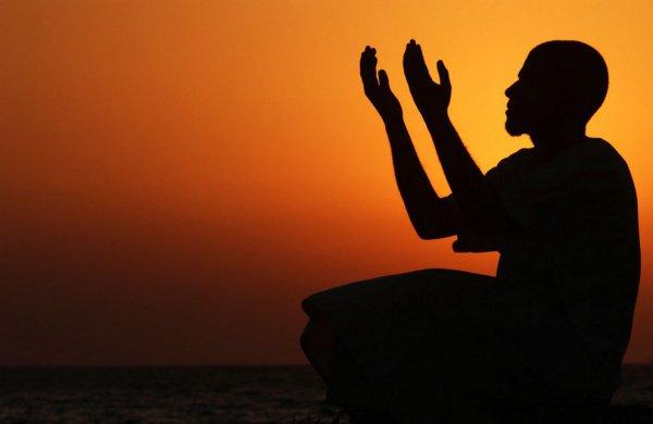 Если вы будете полагаться на Аллаха должным образом