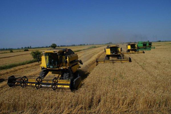 Татарстан будет сотрудничать с Краснодарским краем в сфере сельхозмашиностроения.