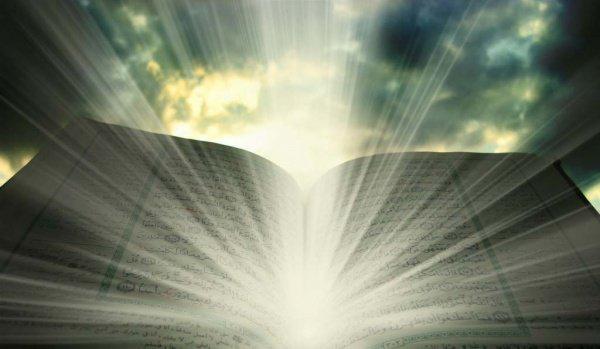 """""""Всевышний Аллах посадил дерево имана на почву нашего сердца, поливал водой милости и вырастил под солнцем истины. """""""