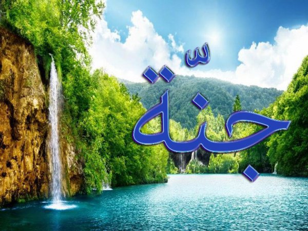 Если человек попросит Аллаха три раза джаннат, рай скажет: «О мой Аллах, введи его в джаннат»