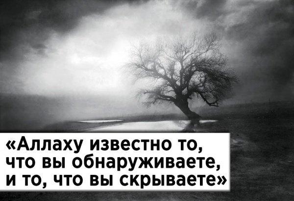 «Аллаху известно то, что вы обнаруживаете, и то, что вы скрываете»
