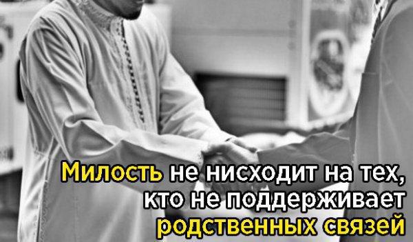 """""""Милость не нисходит на тех, кто не поддерживает родственных связей"""""""