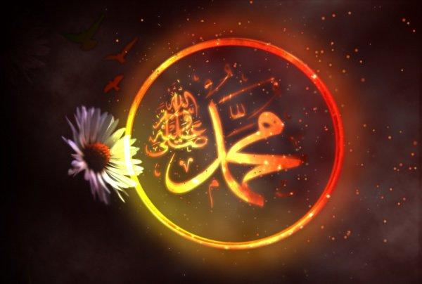 Кто-то говорил, что наш Пророк в течение шести месяцев призывал людей к исламу на основании того, что он видел в своих снах.