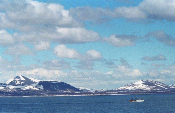 Сейчас в Мировом океане появляются мертвые зоны — области, где в воде содержится крайне мало кислорода