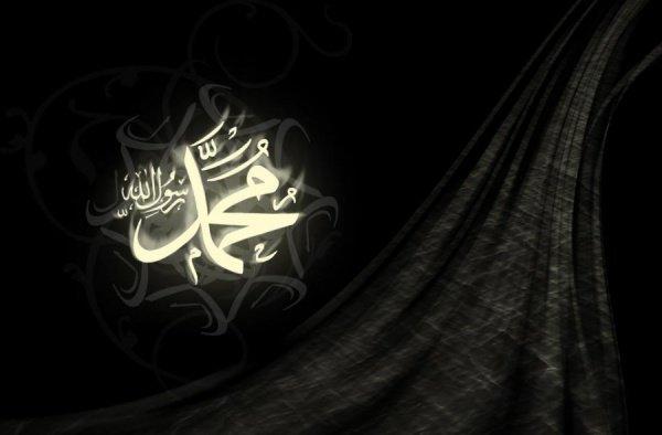 Почему последователи ибн Таймийи - враги Пророка (ﷺ) ?