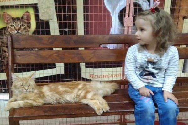 Маленькая Самина нуждается в помощи неравнодушных людей