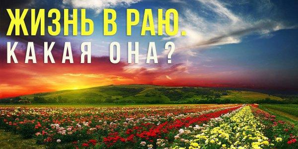 Встретимся ли мы с родителями в Раю?
