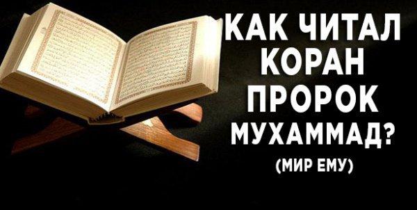 Как читал Коран Пророк Мухаммад?