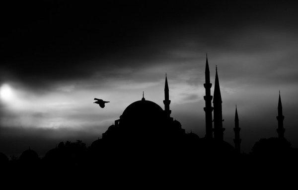 Лидером рейтинга стала Турция, которую посетили 4 907 000 россиян